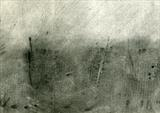 Snow Fence by Cynthia Barlow Marrs SGFA, Drawing, Charcoal on Paper