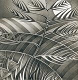 The Fishbone Tree by Cynthia Barlow Marrs, Drawing, Graphite pencil on paper