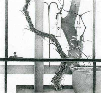 Apple and Vine by Cynthia Barlow Marrs SGFA, Drawing, Graphite pencil on paper