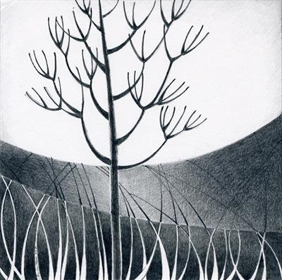 Winter Moon 1 by Cynthia Barlow Marrs, Drawing, Graphite on paper